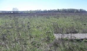 Продается участок в деревне Скрипово Закского района Тульской области