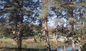 Продается земля в живописнейшем месте Заокского района Тульской области