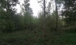 Продается земельный участок  р.п. Заокский ул. Грибная