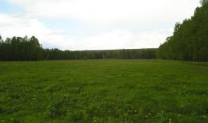 Продается земельный участок 8 соток в курортной зоне б/о