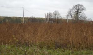 Продается участок в д. Злобино, Заокского райна на берегу реки Скнига