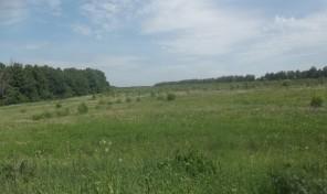 Продается участок в д. Лаптево Заокского района Тульской области