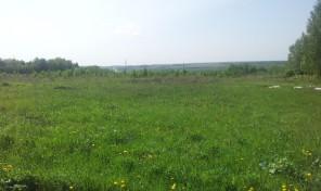 Продается земельный участок 110 км от МКАД, 500 метров до реки Ока.