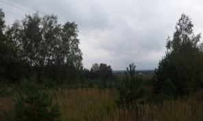 Продается участок 60 соток в д. Веселево Заокского района.