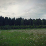 tyapkino_15_20130313_1563230767