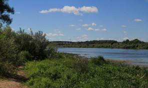 Участок 4 Га на берегу реки Оки недалеко от деревни Ланьшино