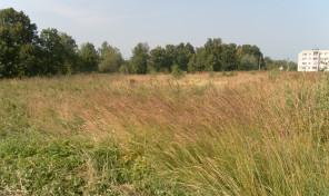 Продаются два смежных участка в поселке «Велегож» Заокский район