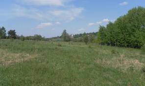 Участок в п. Малахово-2